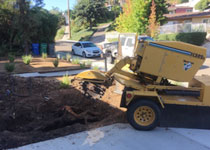Tree Stump Removal El Cajon